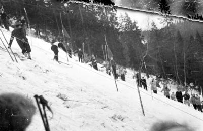 Slalomrenn