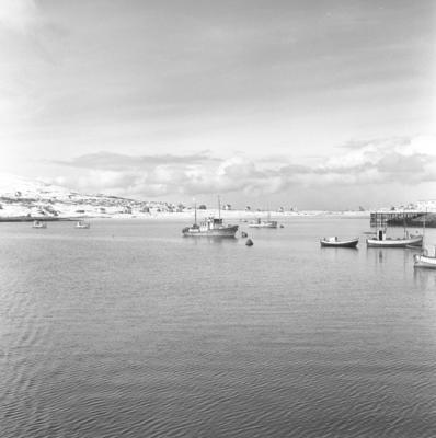 Motiv fra havneområdet i Hasvik på Sørøya