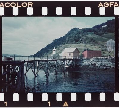 Motiv fra kysten i Trondheimsfjorden