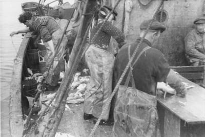 'Fiskere i arbeid i Hasvåg