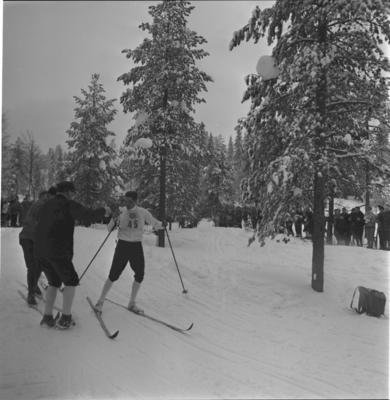 Verdensmesterskapet på ski