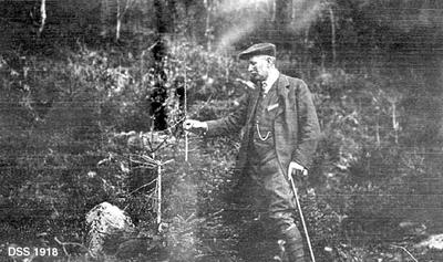 Skogforvalter Jens Haakon Høye (f