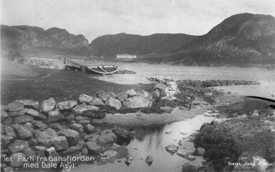 Parti med Gansfjorden med Dale Asyl