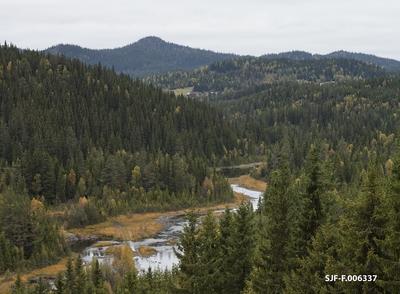 Landskap ved Tokkeåa i nærheten av Hommo i Vinje i Vest-Telemark